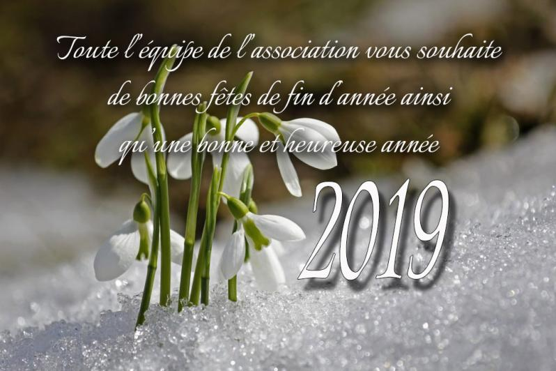 Voeux 2019 01